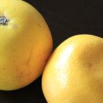 グレープフルーツの香りみたいな人はクールでボーイッシュ