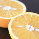 オレンジの香りみたいな人は穏やかなインドア派